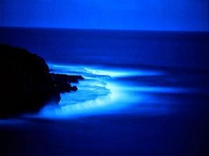 files/user/8400/seapictureblue-sea-at-night-wallpaper.jpg