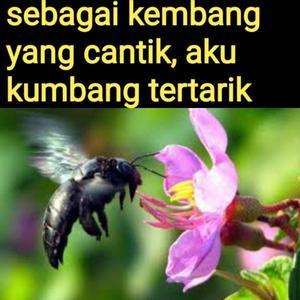 files/user/8514/20190719_184402.jpg